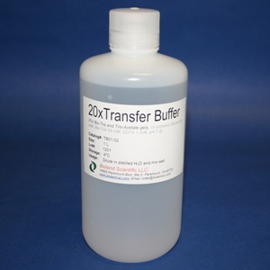 20xTransfer Buffer for Bis-Tris gels (500 ml)
