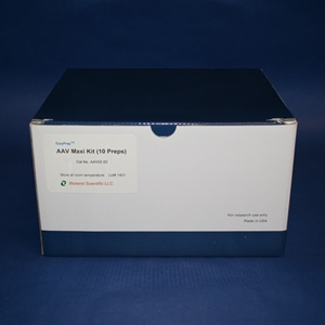 Adenovirus Purification Maxi Kit (10 preps)