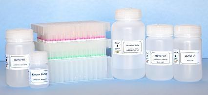 96-well plasmid ezFilter miniprep kit (4x96 Preps)